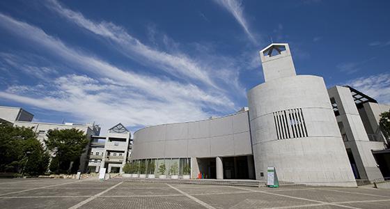 校园里有人工草皮球场和各种规模的教室。
